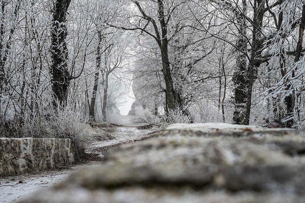 Montfort hiver 2017