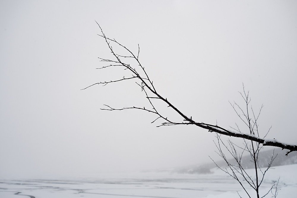 Laponie-2017-SPons-def4-11.jpg