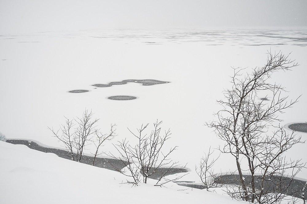 Laponie-2017-SPons-def4-21.jpg