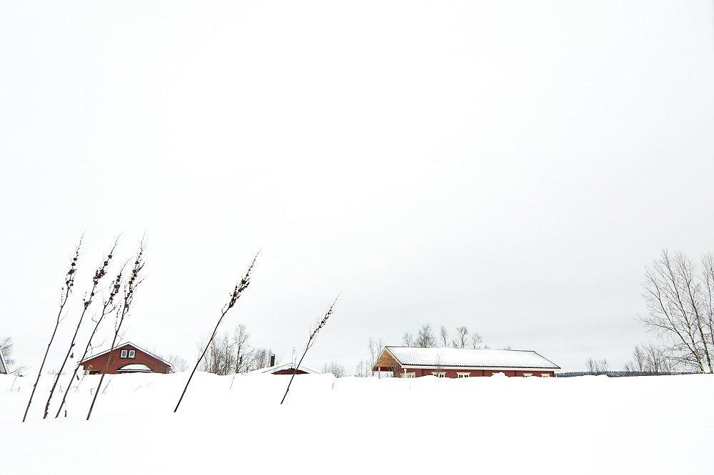 Laponie-2017-SPons-def4-42.jpg
