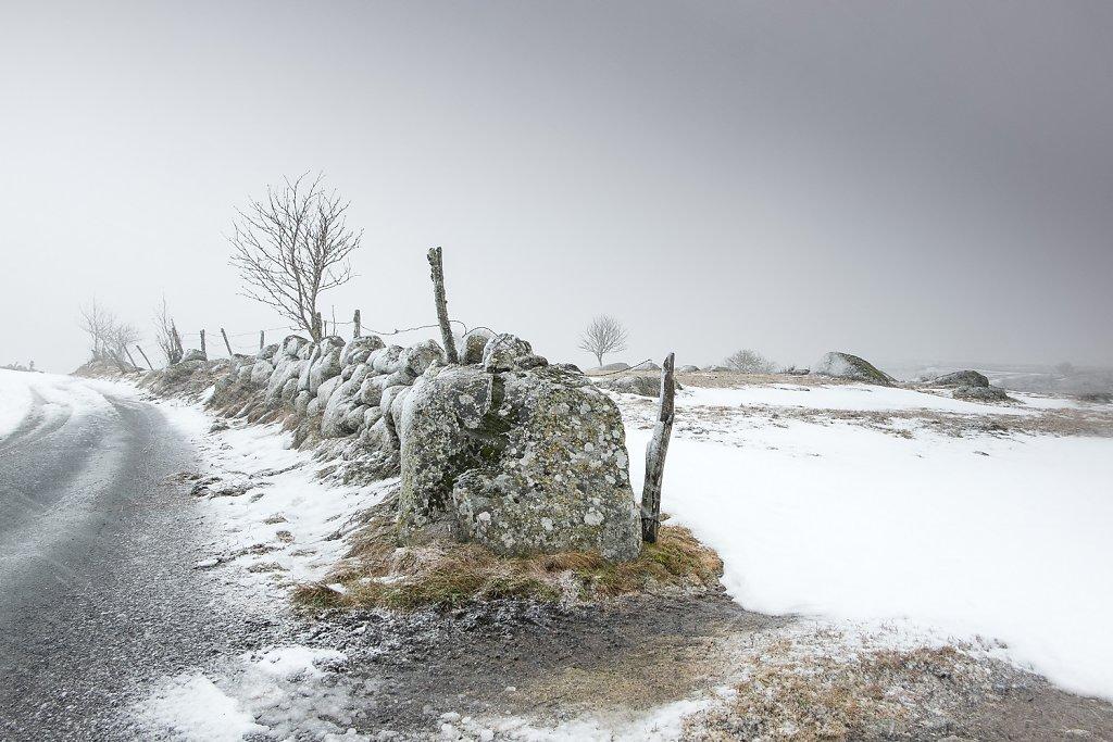 Aubrac-hiver-2017-SPons-def4-22.jpg