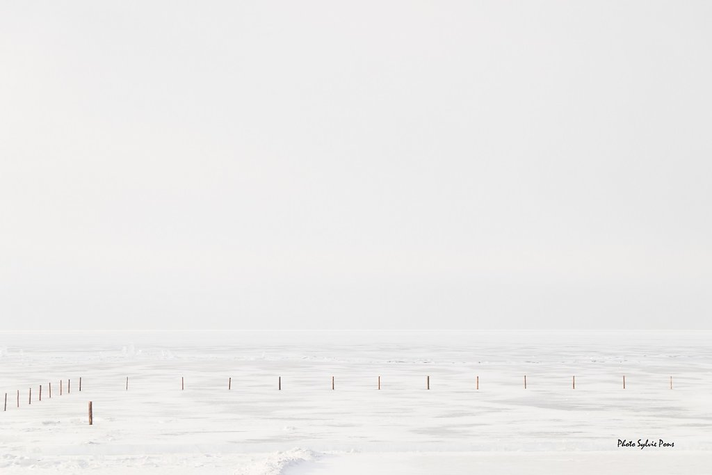 Baïkal 2019 série blanche