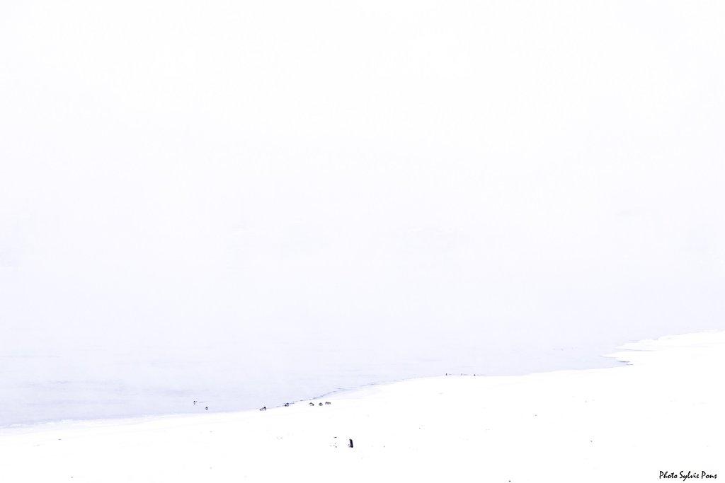 Baikal-2019-Irkoutsk-SPons-18.jpg