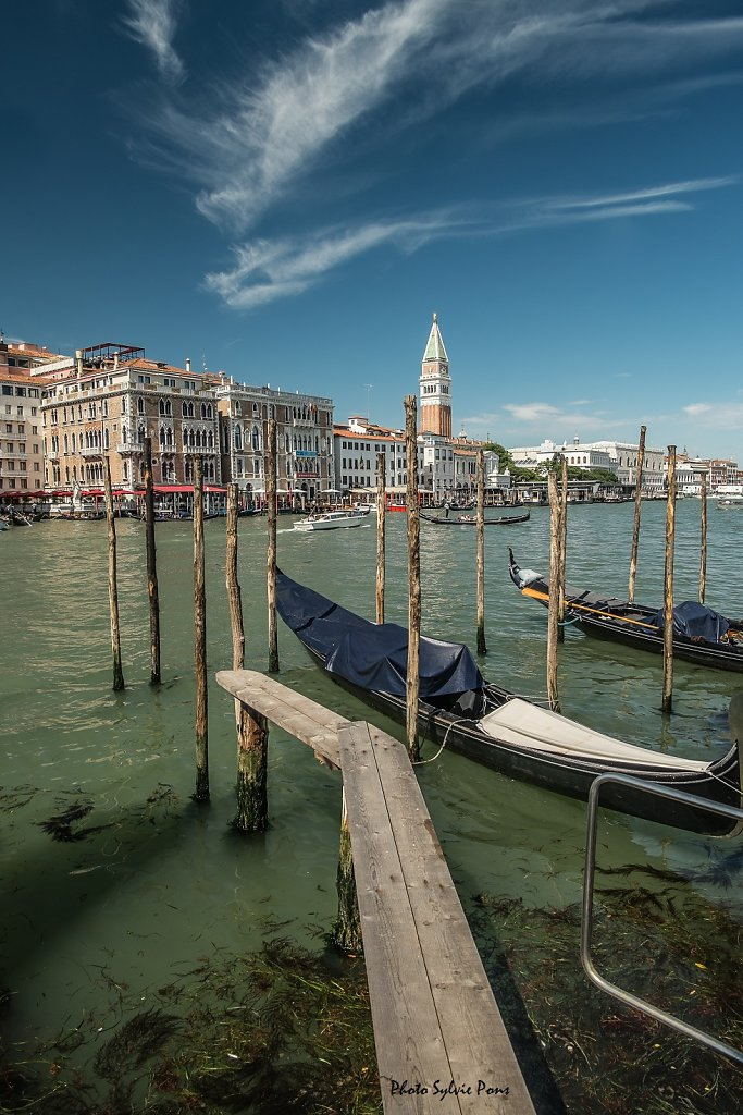 Venise-2019-SPons-5.jpg